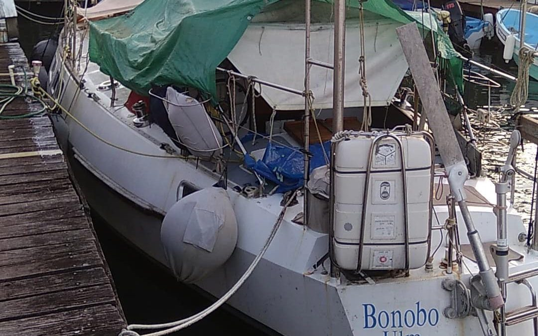 SV BONOBO Located Safely On Passage From Mexico to Rio Dulce