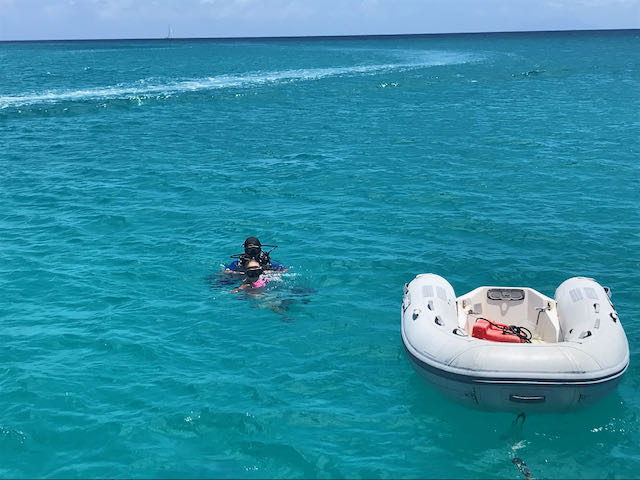 BOLO for Lost Caribe L8 Dinghy St. Maarten, Eastern Caribbean